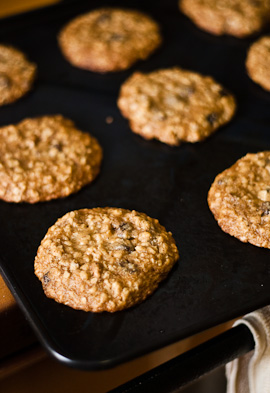 oatmealraisincookies-1
