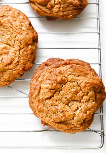 walnutgingercookies-1